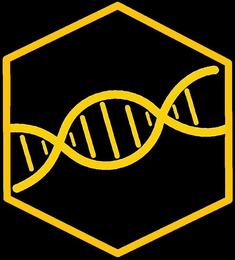 BBoard_DNA.png