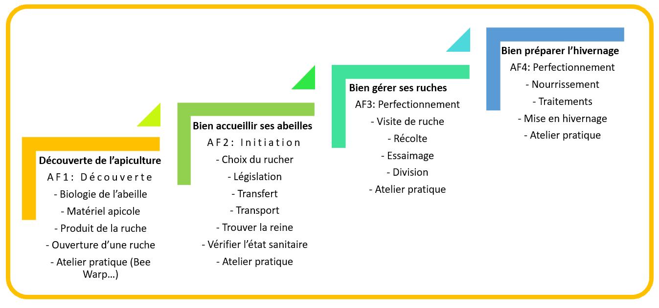 Cycle de formation en apiculture en Essonne
